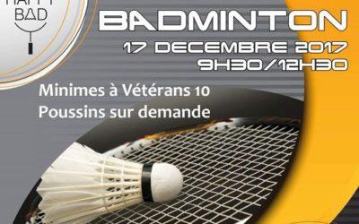 Stage de badminton